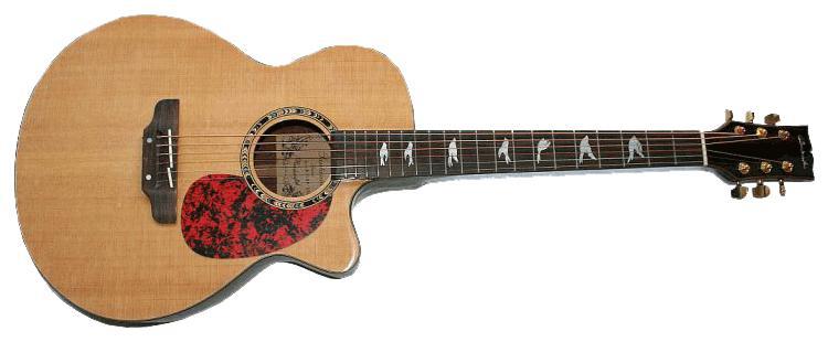 http://www.x7000.de/gitarren/1110/12.jpg