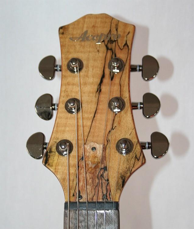 acepro e gitarre le paul typ spalted maple decke massiv mahagoni korpus ebay. Black Bedroom Furniture Sets. Home Design Ideas
